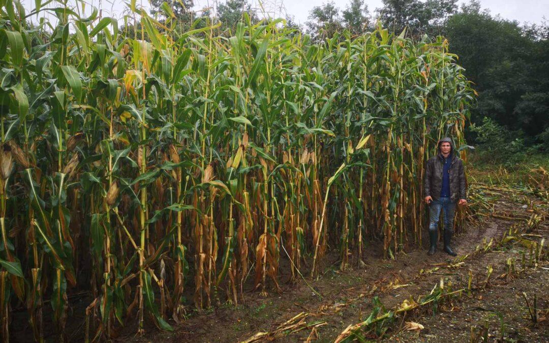 Szakmai kiránduláson vettek részt a Csukás iskola gazdái