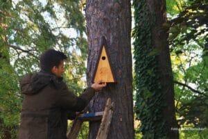 Több mint 30 madárvédelmi berendezést helyeztek ki erdész, vadász tanulóink